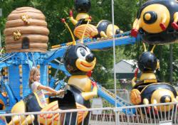Bumble Bee | Beech Bend Amusement Park - Bowling Green, KY